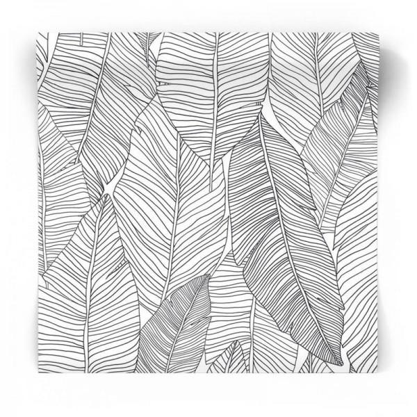 czarno-białe liście tropikalna