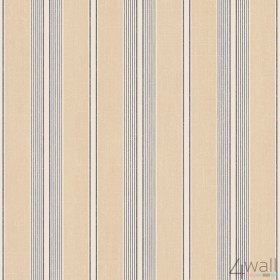 Stripes & Damasks 2 DS29706