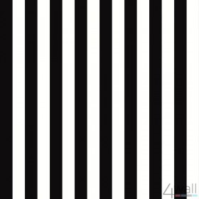 Stripes & Damasks 2 BW28702