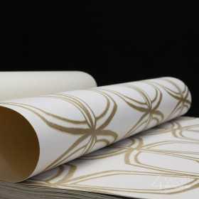 Geometryczna tapeta do przedpokoju w złote wzory