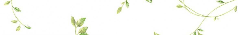 Biała tapeta - kolekcja tapet w jasnych tapet! • Sklep z tapetami ✓